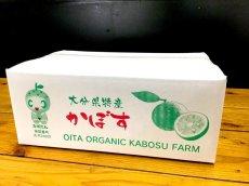 画像2: 無農薬・無添加【かぼす】有機かぼす A級品 2kg(約20個分) (2)