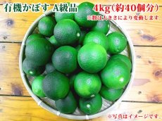 画像1: 無農薬・無添加【かぼす】有機かぼす A級品 4kg (約40個分) (1)