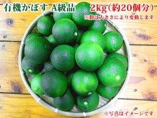 画像1: 無農薬・無添加【かぼす】有機かぼす A級品 2kg(約20個分) (1)